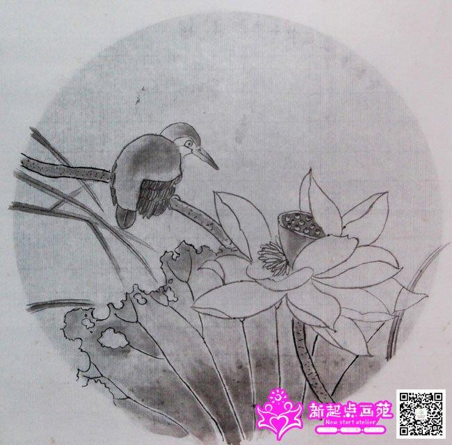 工笔画-荷花(王玥涵)2014年7月22-23日